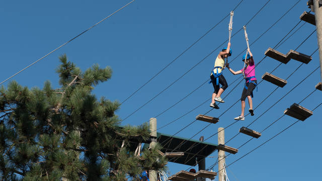 Students participate in ropes course