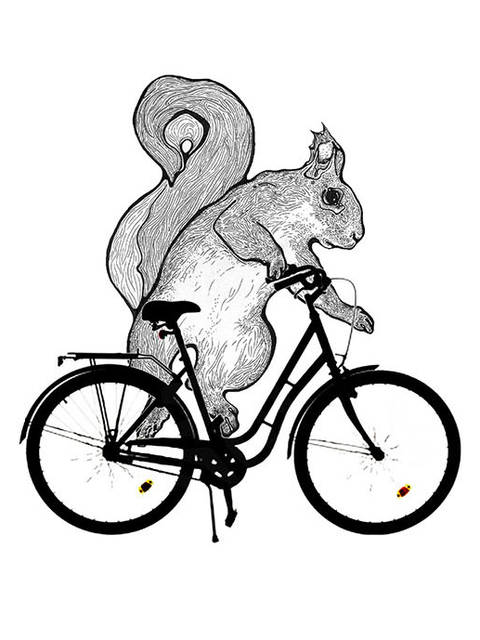 Drawing of a squirrel on a bike