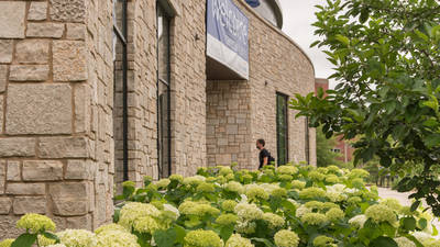 Student entering Davies Center Hydrangeas in full bloom