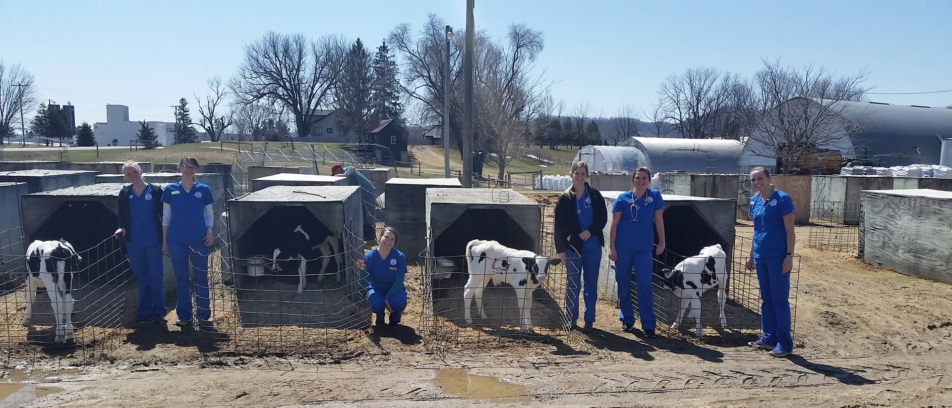 Dairy farm and nursing students 2018
