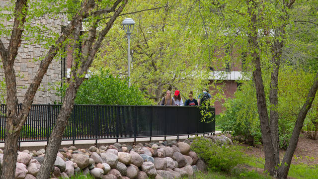 Students walking amidst campus greenery