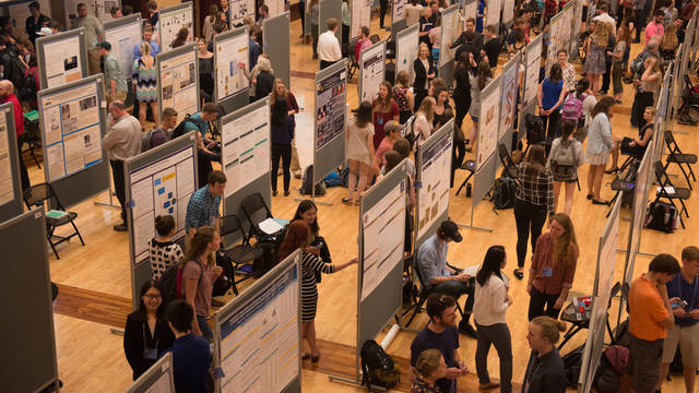 Student research poster session during UW-Eau Claire CERCA event