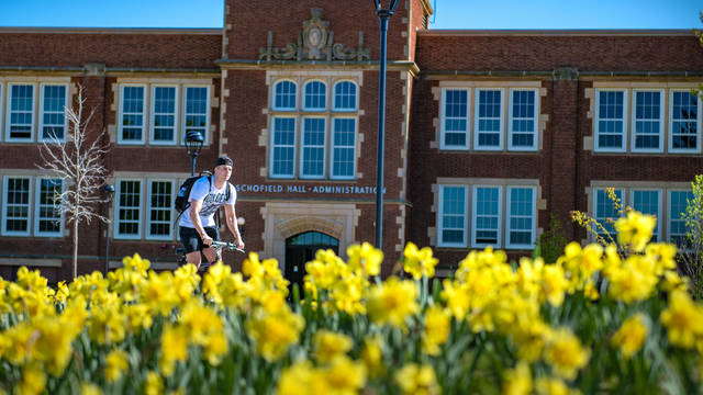 Spring daffodils outside UW-Eau Claire's Schofield Hall