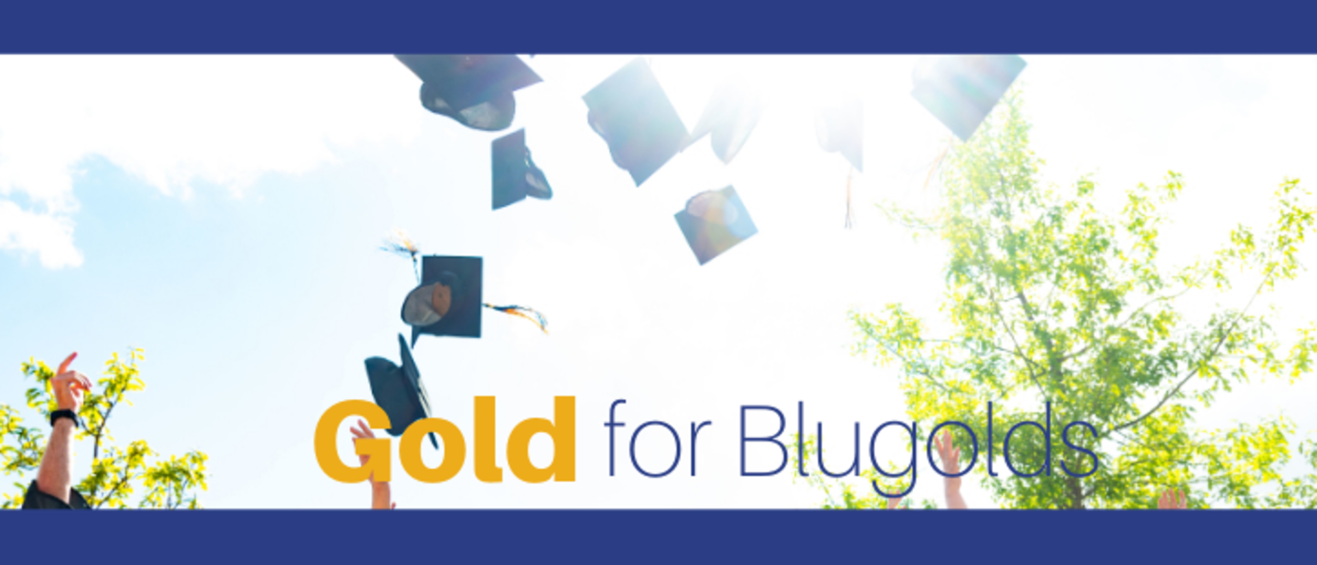 Gold for Blugolds (COB)