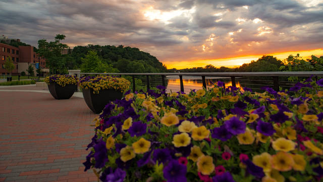 flower pots along Chippewa River