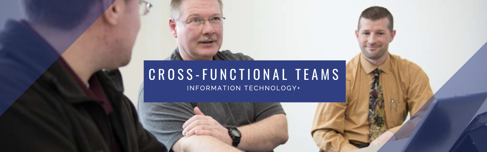 LTS Cross functional teams information technology+