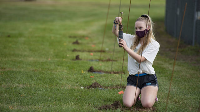 UW-Eau Claire biology student Cassidy Michels helped plant poplar trees Sept. 25 at Bollinger Fields as part of a National Science Foundation-supported research program studying the adaptiveness of tree species in varied climates.