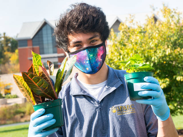 Student in face mask holinf two small plants, outside on campus mall