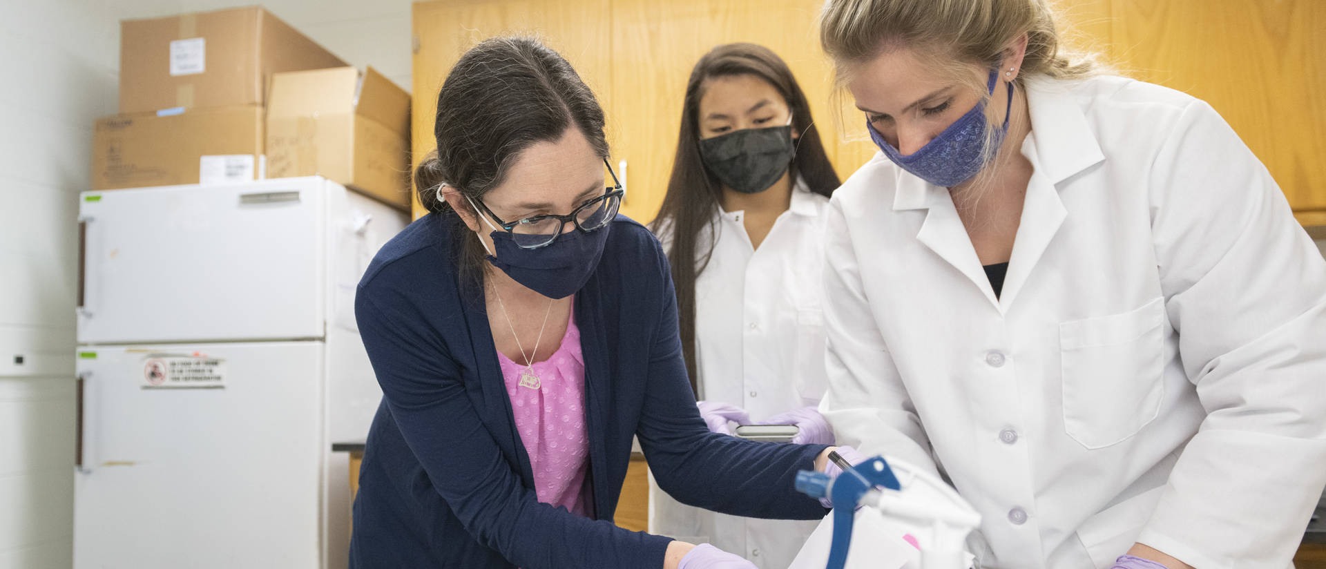 Dr. Jamie Lyman Gingerich, a UW-Eau Claire associate professor of biology, works in a Phillips Hall laboratory with students Kati Sadowska, center, and Caterra Leavens.