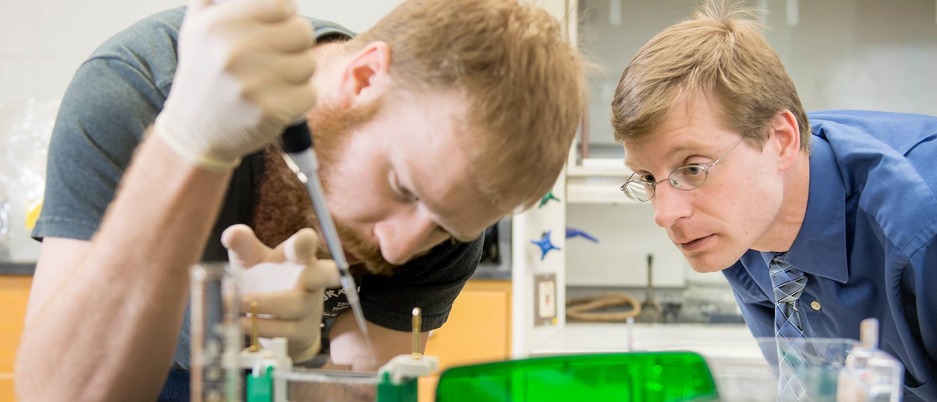 Gavin Sunde (left) and Dr. Derek Gingerich (right) extract plant proteins to analyze response to red wavelength light.