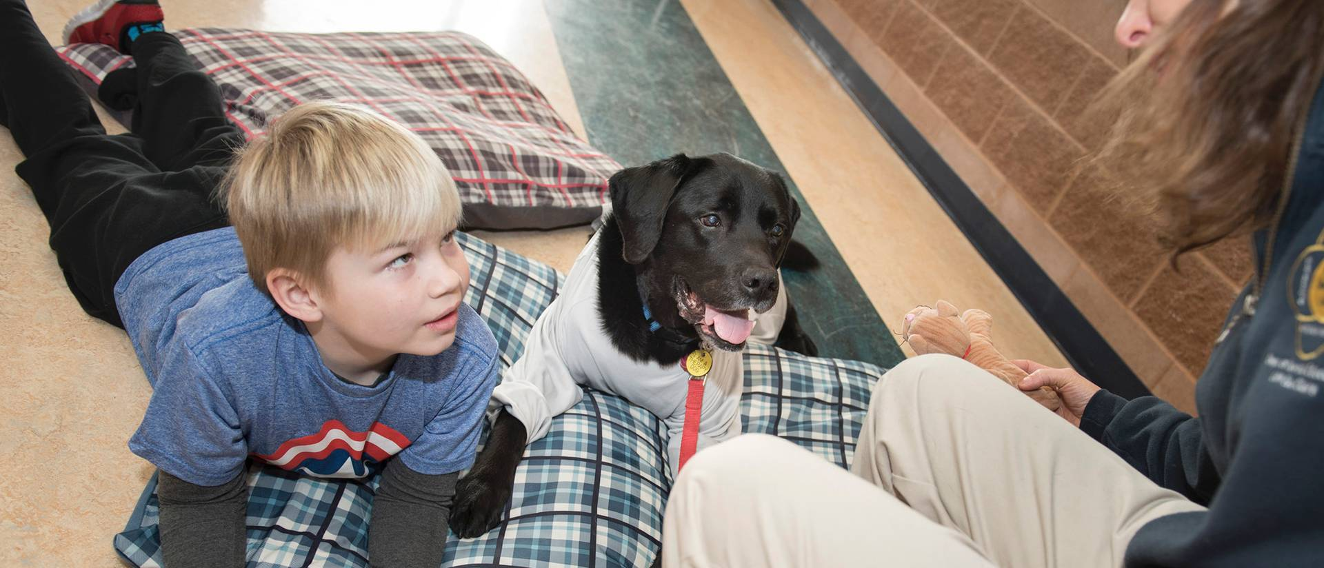 Nicholas Hein, therapy dog Solomon and Dr. Anne Papalia