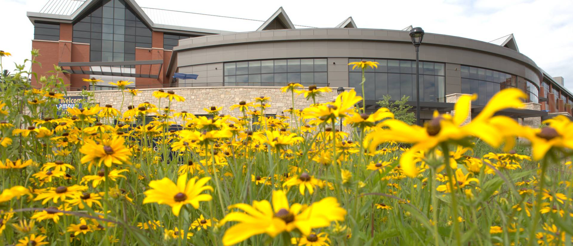 late summer flowers bloom with Davies Center as backdrop