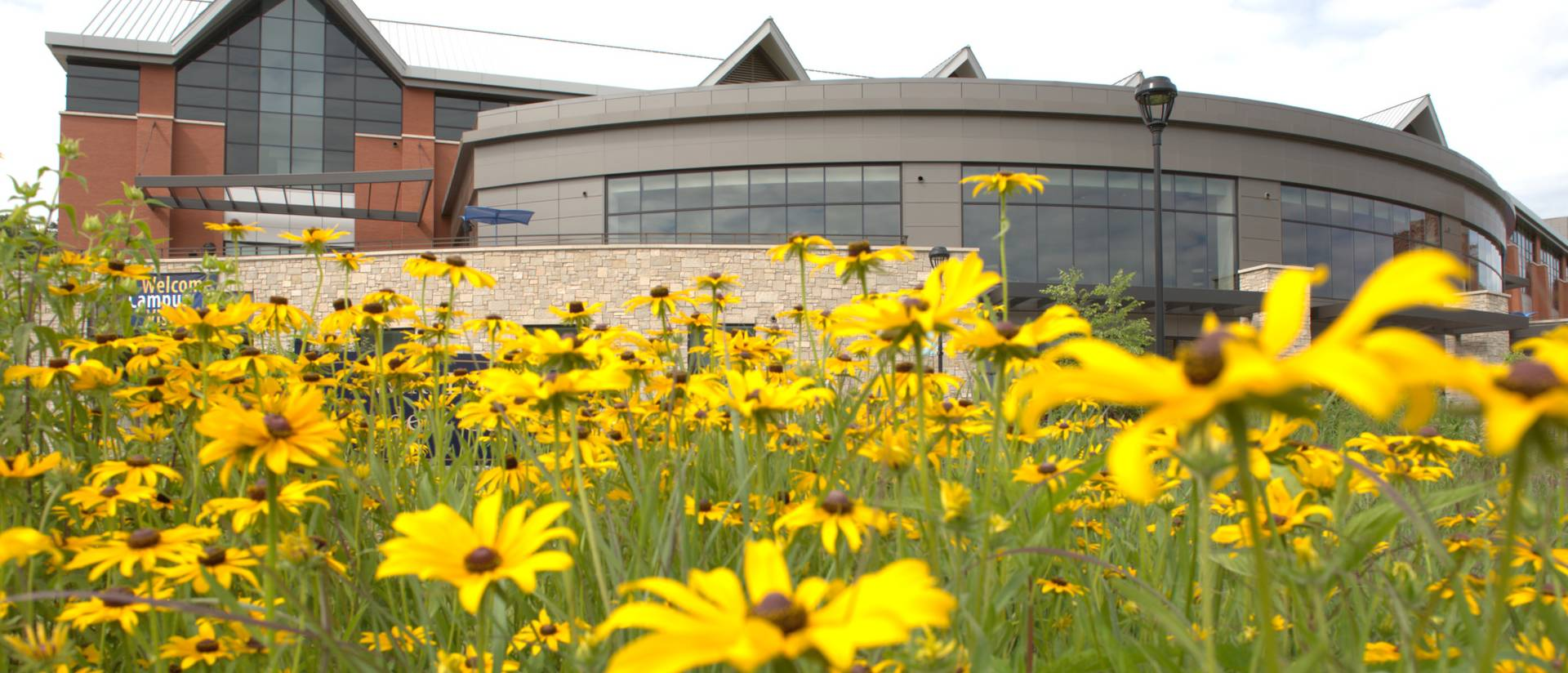 Davies Center and daisies