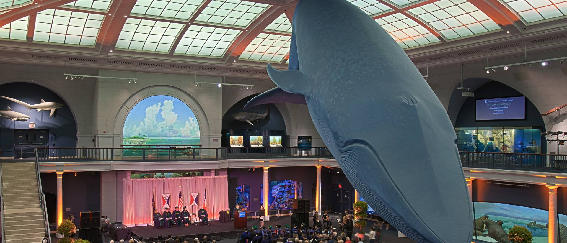 Commencement at American Museum of Natural History