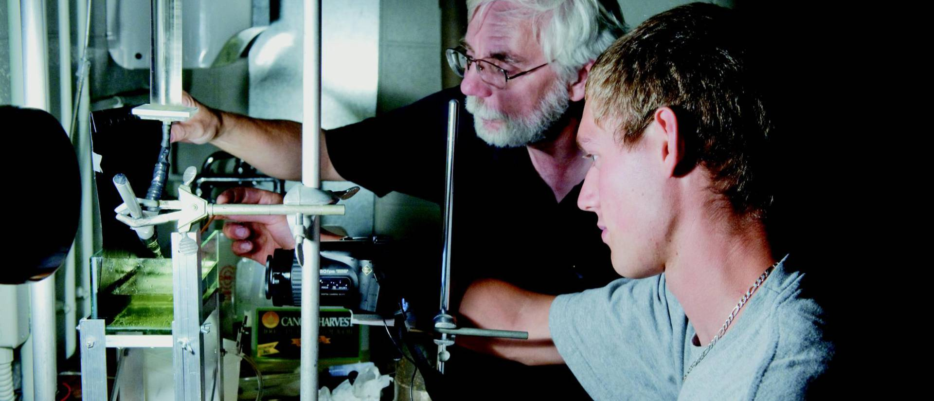 Science, business programs ranked among the top