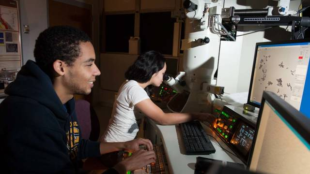 Students researching at UW-Eau Claire