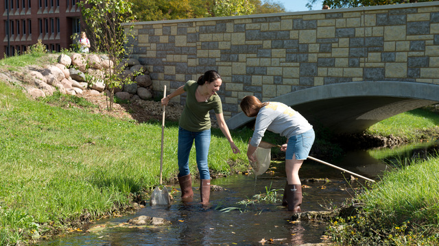 Biology students in the creek on the UW-Eau Claire campus