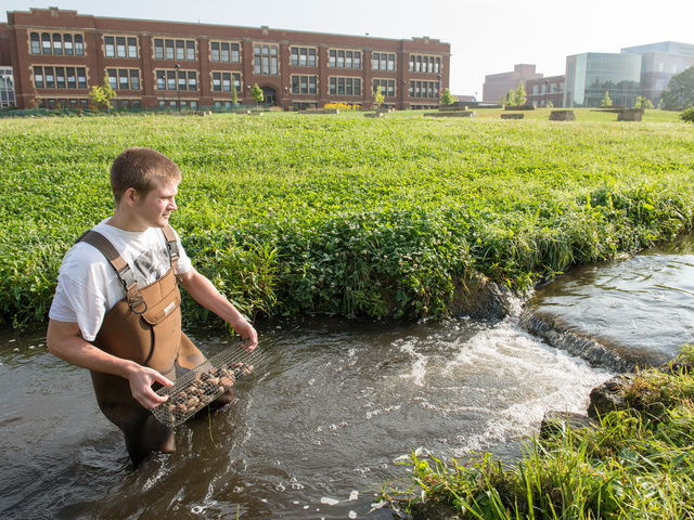 Student in Little Niagara Ceek at UW-Eau Claire