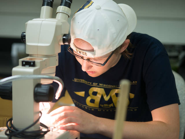 UWEC professor and student working in materials science lab