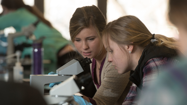 Student research in the classroom