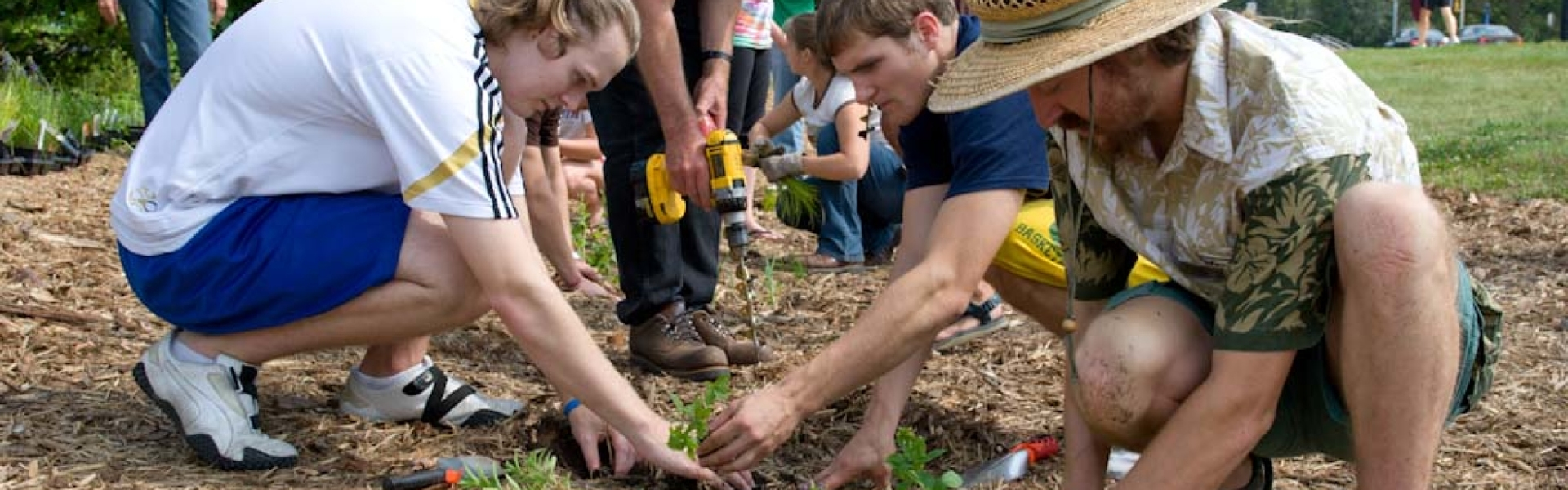 UW-Eau Claire service-learning experience in a local rain garden
