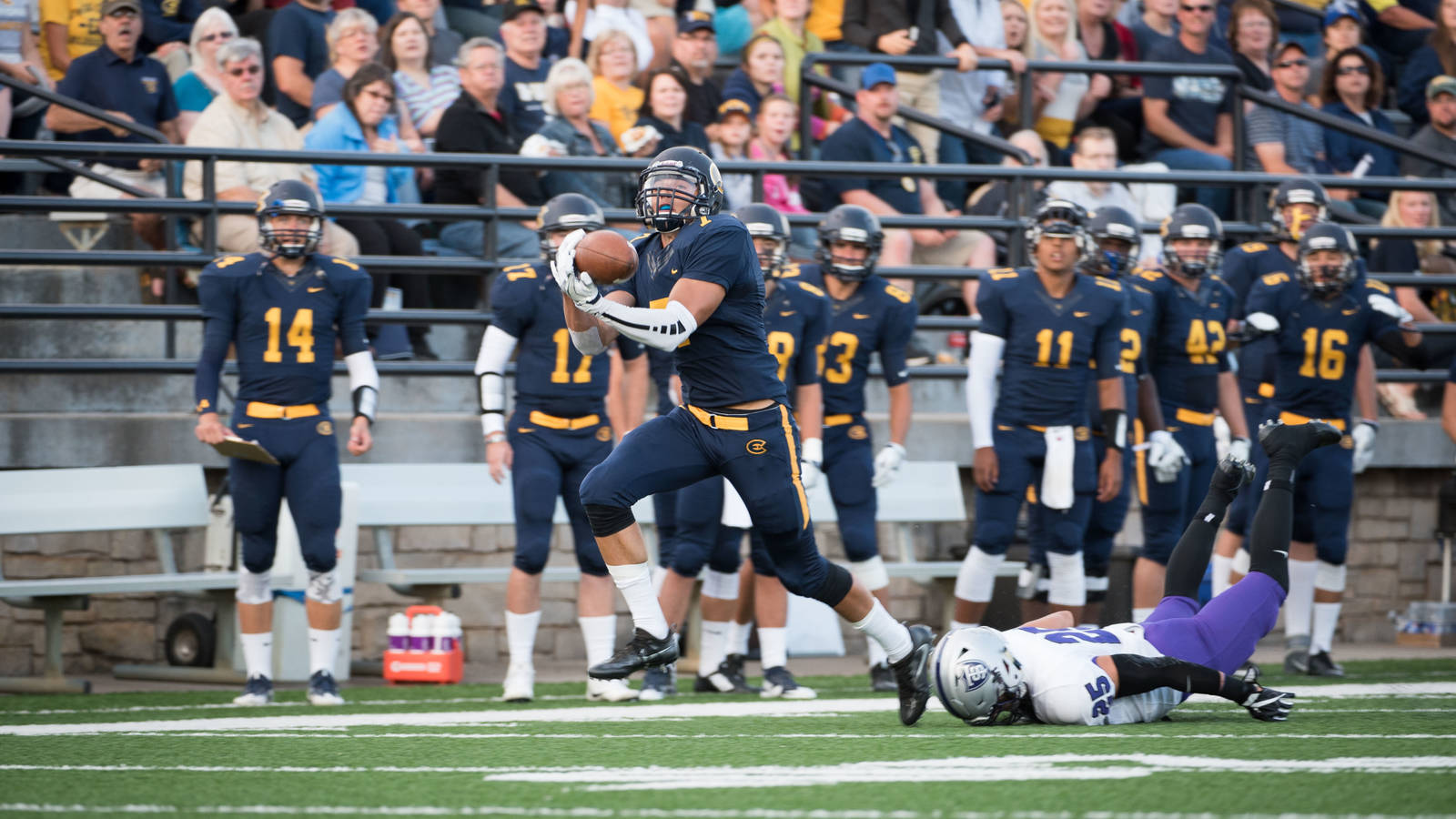 Blugold football player catching pass at home game