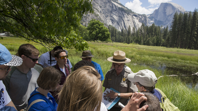 Students learning from an expert at Yosemite