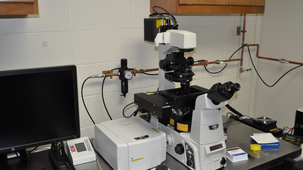 Laser Scanning Confocal Fluorescence Microscope