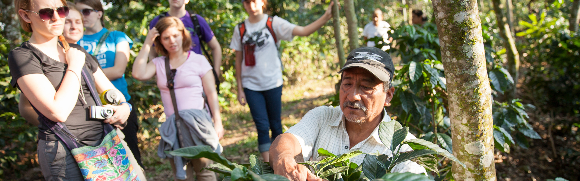 Guatemalan coffee grower shows immersion students how coffee grows