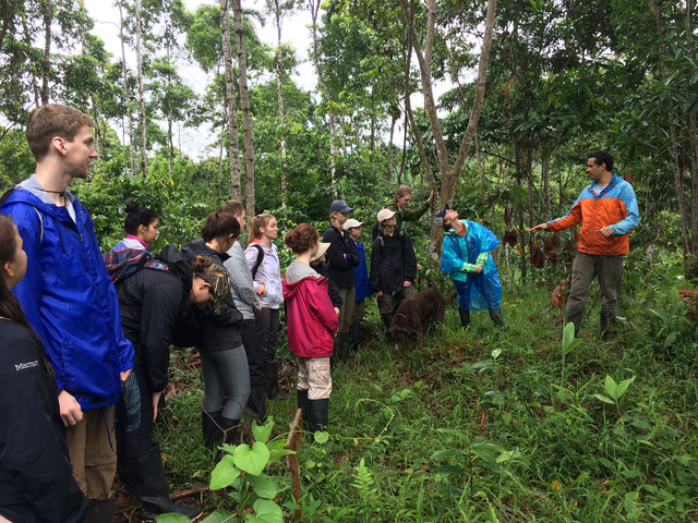 Blugolds hike through a family farm in the community of La Libertad, learning about the agroforestry system.