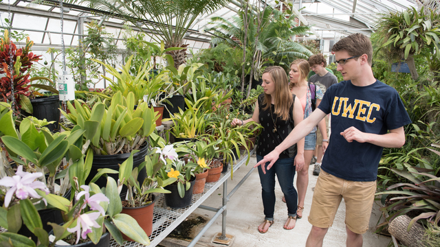 Students in the UWEC greenhouse
