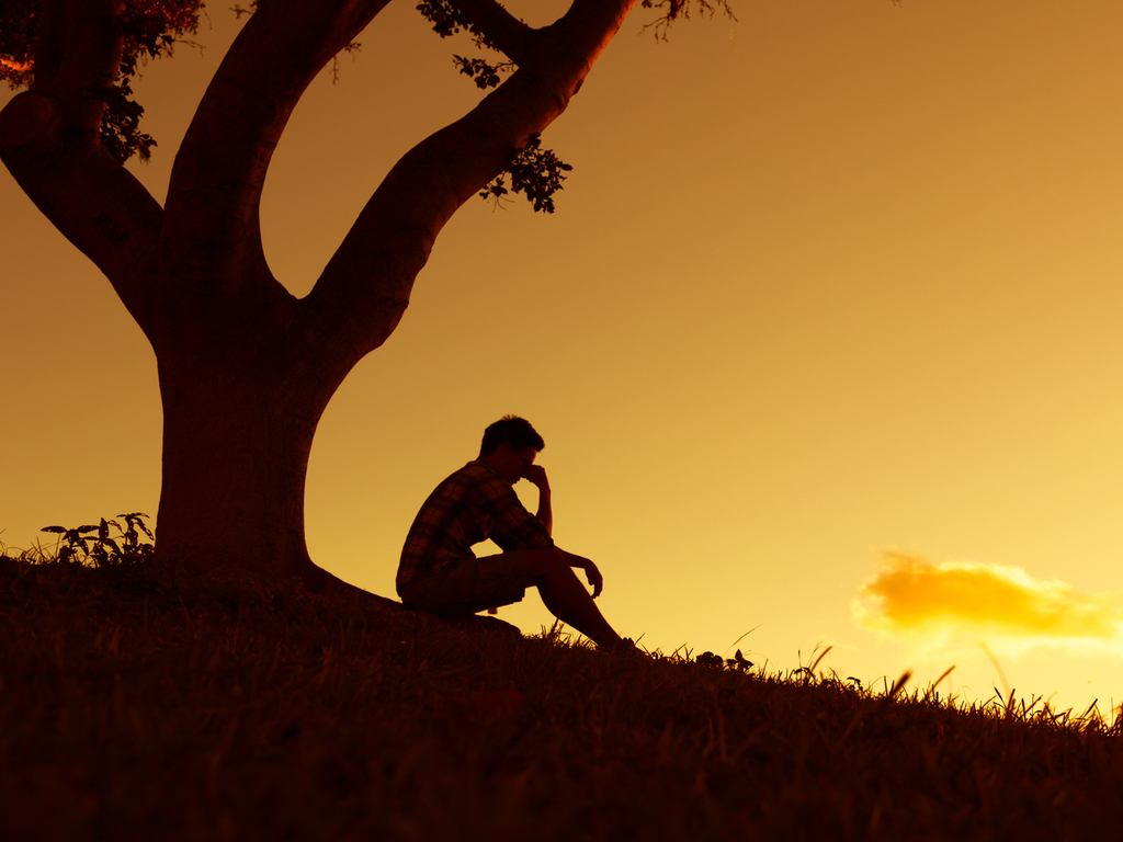 Stock photo of person sitting under tree
