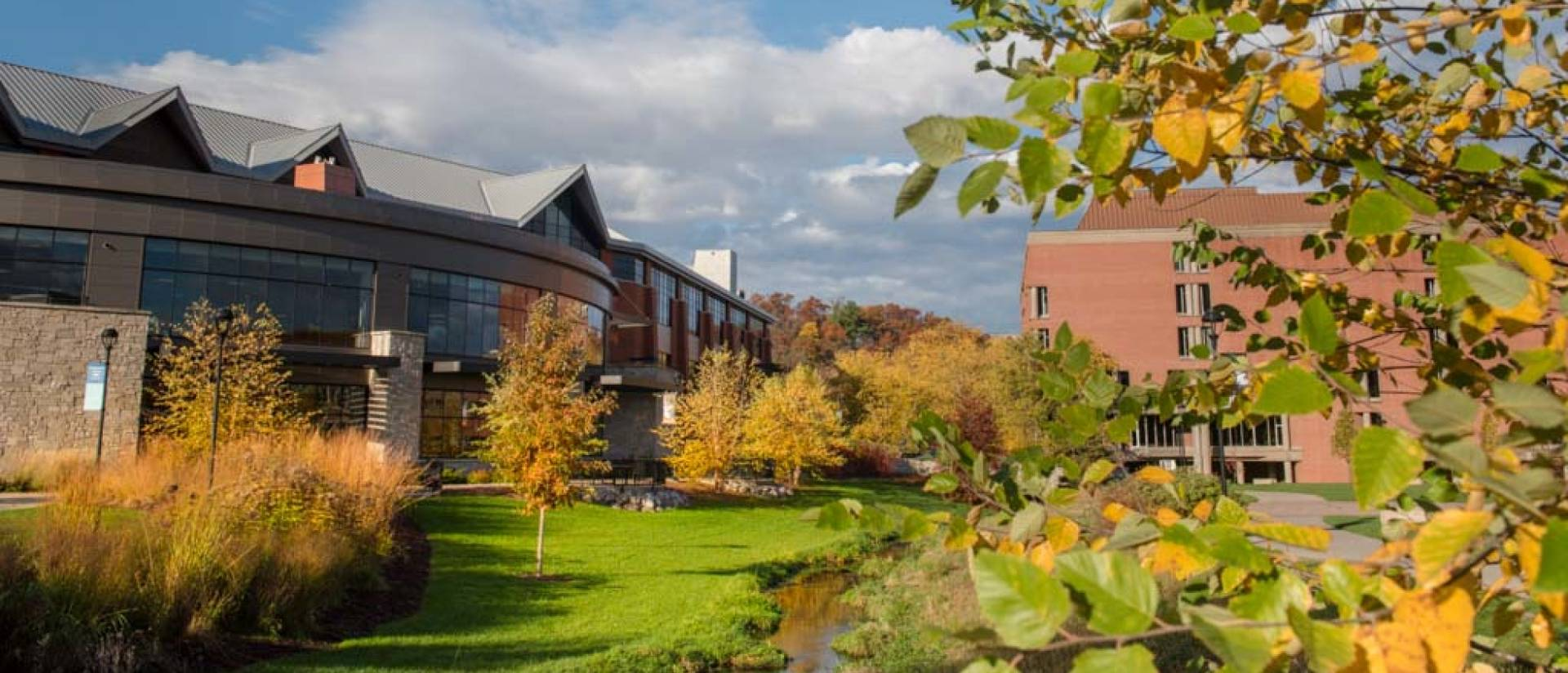 Campus beauty shot of Davies during the fall.