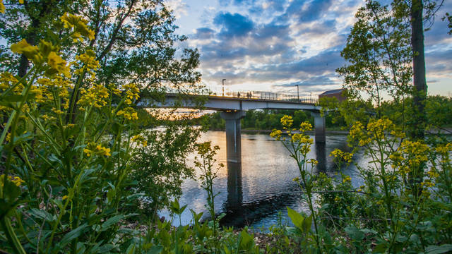 Campus bridge during sunset